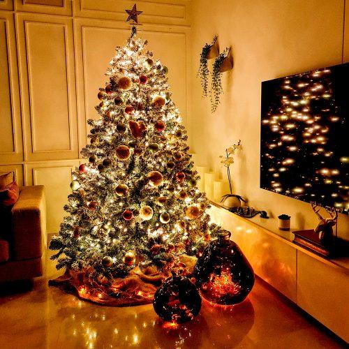christmas-tree-home